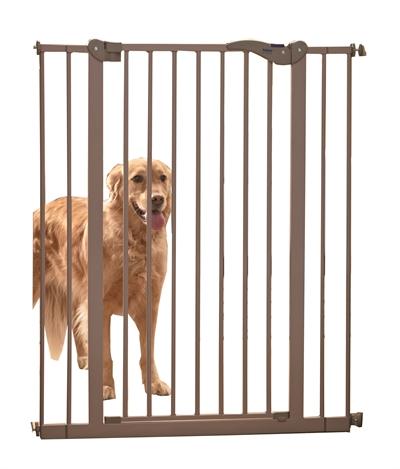 traphekje hond